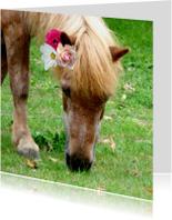 Dierenkaart Paard met bloemen