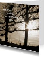 Condoleancekaarten - een leven vervliegt - bomen en zon
