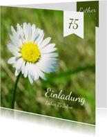 Einladungskarte zum Geburtstag Gänseblümchen