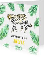 Felicitatie geboorte jaguar