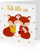 Felicitatie geboorte kaartje tweede kindje