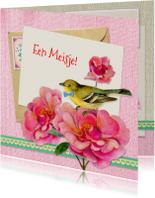 Felicitatie geboorte vogeltje