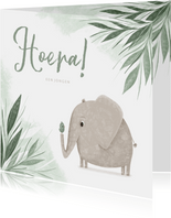 Felicitatie hoera een jongen jungle olifantje met vogel