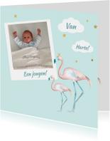 Felicitatie jongen flamingo foto