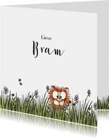 Felicitatie kaartje geboorte leeuwtje