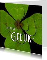 Felicitatie Klavertje GELUKt -OT