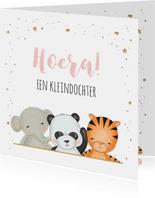 Felicitatie kleinkind - jungledieren met confetti