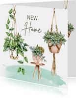 Felicitatie nieuwe woning hangplanten