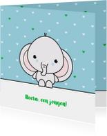 Felicitatiekaarten - Felicitatie - Schattig olifantje jongen