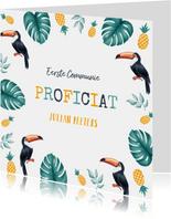 Felicitatiekaart communie lentefeest tropical toekan