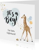 Felicitatiekaart geboorte zoon giraf hartjes goud spetters