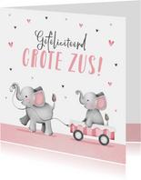 Felicitatiekaart grote zus meisje geboorte olifantjes hartje