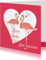 Felicitatiekaart Love birds flamingo's
