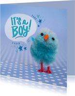 Felicitatiekaart met blauw kuiken geboorte jongen