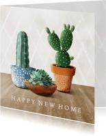 Felicitatiekaart met cactussen en succulent in pot