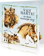 Felicitatiekaart met feestelijke paarden