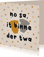 Felicitatiekaart tweeling fries 'no sa, it binne der twa'