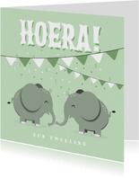 Felicitatiekaart tweeling jongen meisje mintgroen olifantjes