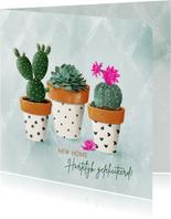 Felicitatiekaart vetplanten in zwart-wit terracotta potjes