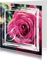 Felicitatiekaart vintage roos