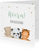 Felicitatiekaart voor kleinzoon met drie safari diertjes
