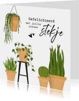 Felicitatiekaart voor nieuwe woning met cactus / planten