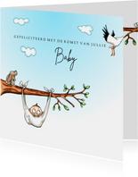 Felicitatiekaarten baby in luier aan boomtak