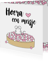 Felicitiekaart roze muisjes