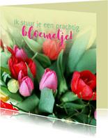 Fotokaart tulpen kleurrijk
