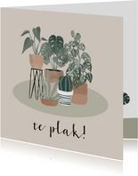 Fryske felicitatiekaart nieuwe woning planten