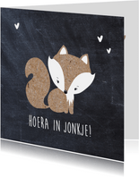 Fryske kaart geboorte zoon vos