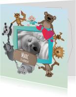 Geboortekaartjes - Geboorte Fotokaart - Jongen Dier