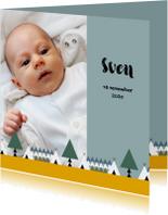 Geboorte jongen bos thema 1E
