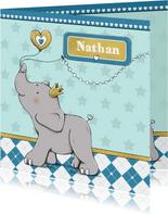 Geboorte jongen olifant goud-IH