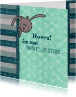 Felicitatiekaarten - geboorte lief konijntje groen