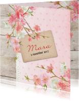 Geboorte lief mara - B