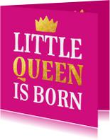 Geboorte - little queen is born