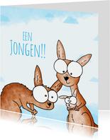 Geboortefelicitatie jongen - Kangoeroes met kleintje