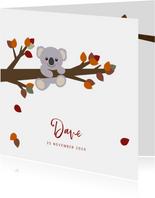 Geboortekaart herfst lief koalabeertje