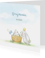 Geboortekaart konijn jongen met kuikens en vlinder