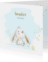 Geboortekaart konijntje - jongen