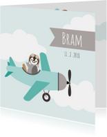 Geboortekaart pinguinvliegtuig - HB