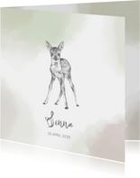 Geboortekaart potloodtekening van een hertje waterverf
