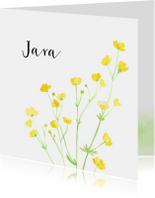 Geboortekaartje boterbloempjes