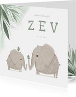 Geboortekaartje broertje met olifantjes en vogels