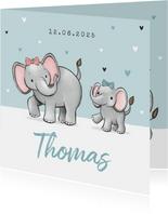 Geboortekaartje broertje zus olifantjes hartjes strikjes