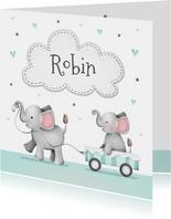 Geboortekaartje broertje zusje olifantjes wolkje