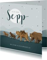 Geboortekaartje dieren beren beestenboel broertje sterren