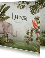 Geboortekaartje dieren jungle olifant papegaai