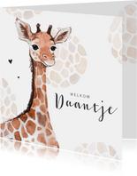 Geboortekaartje giraf patroon lief jongen  meisje hartjes